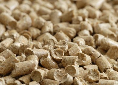 Россия разрешила поставку соевого шрота с ГМО пяти иностранным компаниям