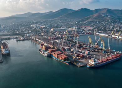 Российские порты погрузили на суда 71 тыс. тонн подсолнечного масла по итогам прошлой недели