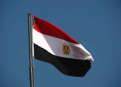Египет проведет тендер на закупку на закупку бутилированного растительного масла