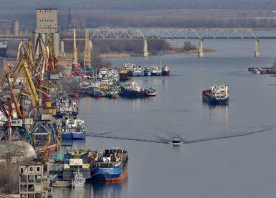 В декабре отгрузки масличных и продуктов переработки из российских портов уменьшились на 17%