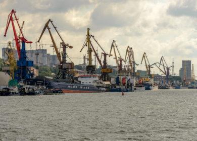 Российские порты увеличили в марте перевалку масличных и продуктов переработки в 1,4 раза