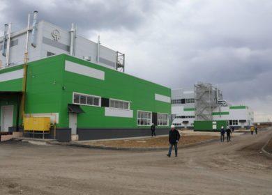 Инвестиции в строительство завода по производству масла в Липецкой области превысят 11 млрд рублей