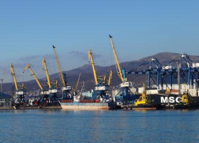 Объемы экспорта масличных и продуктов переработки из портов России в 2020 году достигли 6,6 млн тонн