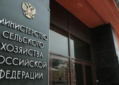 Глава Минсельхоза РФ отметил снижение цен на подсолнечное масло
