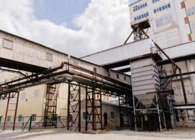 Губернатор Амурской области обсудил с инвестором вопрос строительства завода по переработке сои