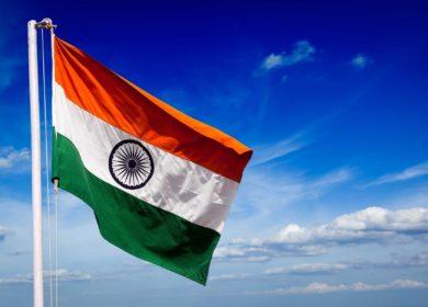 Индия увеличила импорт растительных масел в декабре