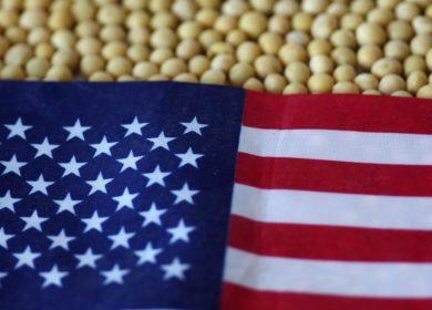 США увеличили переработку соевых бобов в марте 2021 г.