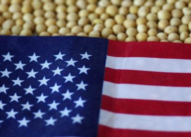 Китай в 1,5 раза увеличил импорт сои из США в 2020 году