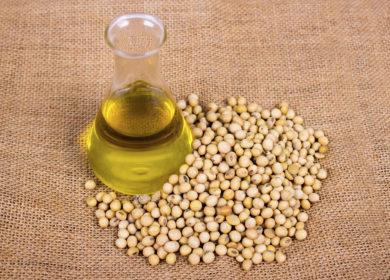 Резкое подорожание соевого масла поддержит цены на подсолнечное масло и подсолнечник