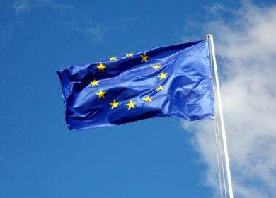 Евросоюз в текущем сезоне стал меньше импортировать подсолнечного масла и шрота