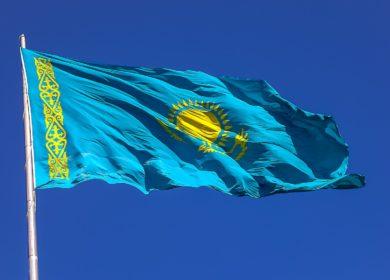 Запасы масличных культур в Казахстане превысили отметку в 1,4 млн тонн