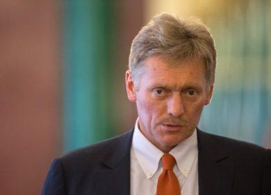 В Кремле признали эффективными меры по сдерживанию цен на подсолнечное масло, — Песков