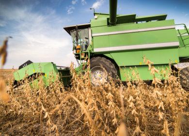 Бразильским фермерам осталось убрать менее 30% площадей под соей