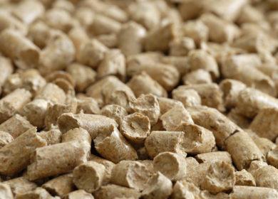 Экспорт рапсового и соевого шрота из Калининградской области с начала года превысил 64 тыс. тонн