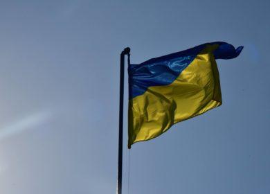 Украина начнет закупку сои из Бразилии в марте