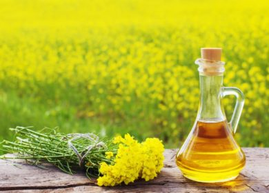 Кировская область в январе реализовала более 400 тонн рапсового масла в КНР