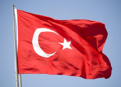 Турция импортировала практически 3 млн тонн сои в 2020 году