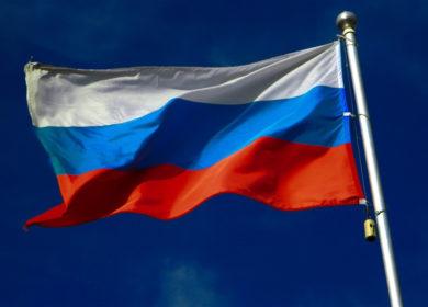 Экспорт масложировой продукции из РФ с начала года вырос на 42%
