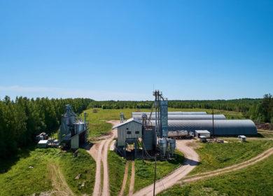 Лебяжский МЭЗ начал закупать рапс из соседних российских регионов