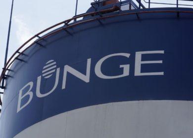 Bunge вышла в прибыль в 2020 году