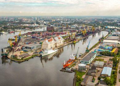 В августе порты России отгрузили более 400 тыс. тонн масличных и продуктов переработки