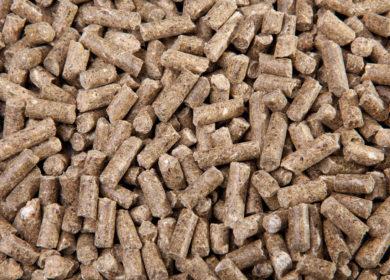 Башкирия наращивает экспорт кормов