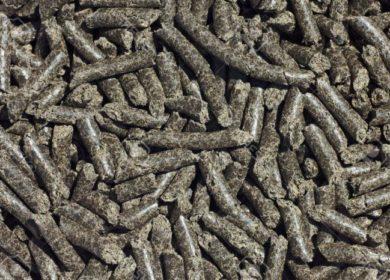 Болгария в текущем сезоне продала Китаю 200 тыс. тонн подсолнечного шрота