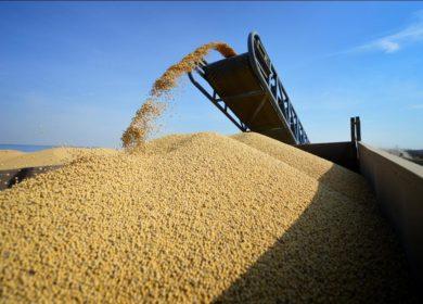 В США в феврале переработали меньше всего сои за последние 1,5 года