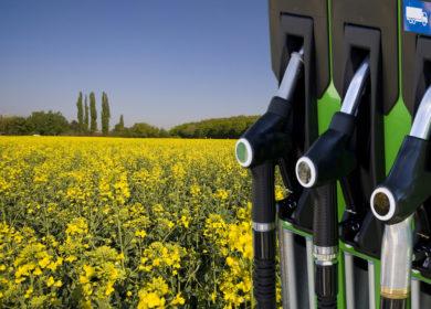 США увеличили выработку биодизеля в 2020 году