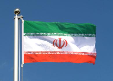 Иран увеличил закупки шрота и растительного масла в 2020/21 МГ