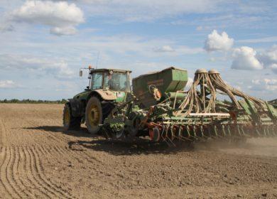 Посевные площади под масличными культурами в Орловской области планируют увеличить