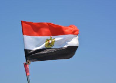 Египет проведет два тендера на закупку растительного масла