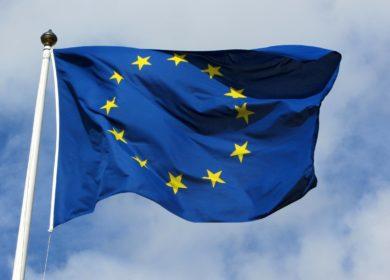 Экспорт/импорт масличных культур, растительного масла, шрота. Обзор Еврокомиссии
