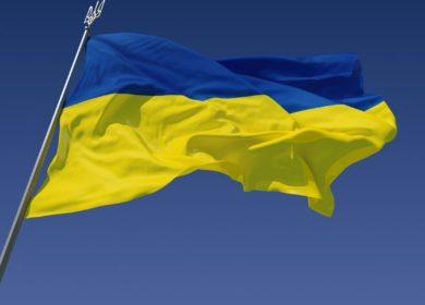 Цены на украинское подсолнечное масло упали до 6-месячного минимума