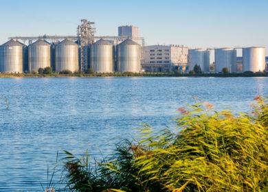 Украинский завод «Олияр» расширяет производство подсолнечного и рапсового масел