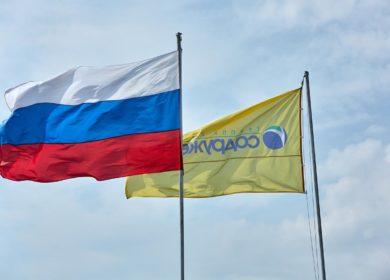 В Курской области появится новый завод по переработке сои и подсолнечника