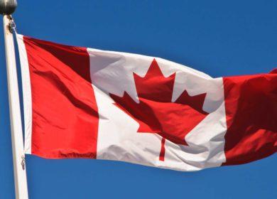 Запасы канолы в Канаде сократились до трехлетнего минимума