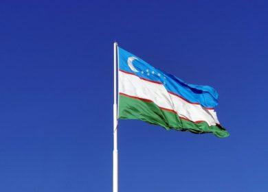 В Узбекистане назвали ТОП регионов с самым дорогим подсолнечным и хлопковым маслом