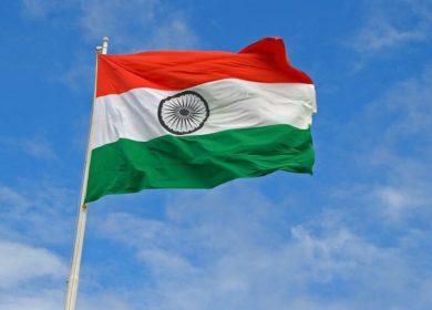 Темпы сева масличных культур в Индии по-прежнему уступают прошлогодним