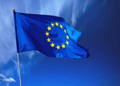 Страны ЕС увеличили отгрузки рапсового и соевого шротов в 2020/21 МГ