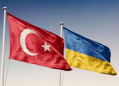 Украина планирует увеличить экспорт масличных культур в Турцию