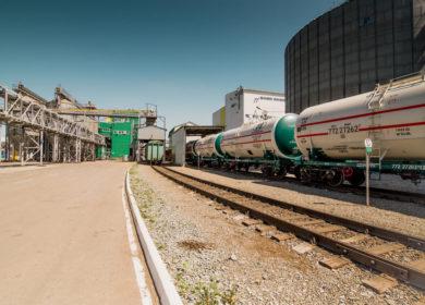Имущество агрохолдинга «Юг Сибири» снова выставлено на торги