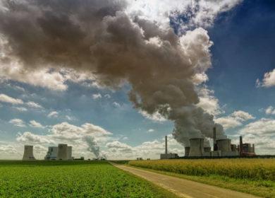 Чистый воздух повысил урожайность сои в США