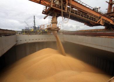«Астон» может лишиться части мощностей для перевалки зерна