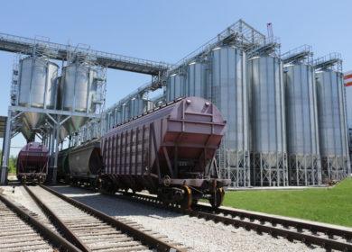 Завод пошел как по маслу. Группа «Русагро» расширяет бизнес в Саратовской области