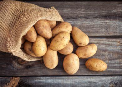 В Израиле создали картофельное «молоко»